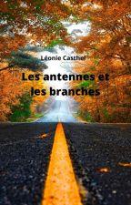 Les antennes et les branches by LCasthel