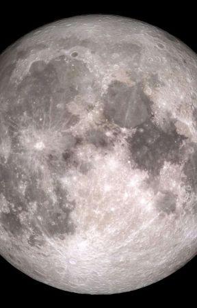 Taming the Moon  by BurnigStudio