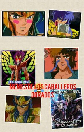 Memes de Los caballeros del zodiaco  by azuziza