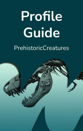 Profile Guide by Horror