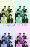 Adopted by BTS | Finnish cover