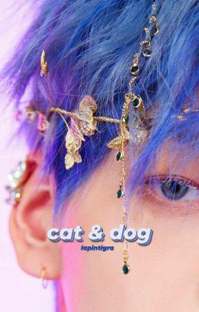 cat & dog | yeonbin by lapintigra