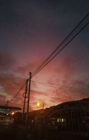 quotes ∥ exo by senpiexo