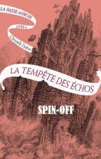 La Passe-Miroir : La tempête des Échos (spin-off) by unepassiondesmots