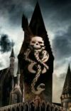 The Death Eaters Mate  cover