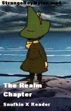 The Realm Chapter || Snufkin X Reader by roboxhoe