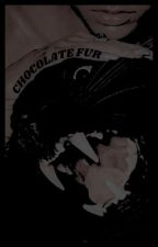 Chocolate Fur | Quil Ateara  by chrryslvt