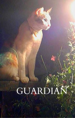Guardian by STANDARDTHOUGHT