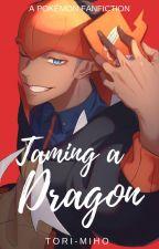 Taming A Dragon by Tori-miho