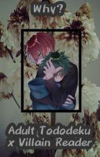 {Why..?}Adult!Todoroki x Villain!Reader x Midoriya (Deku) by sksksk951