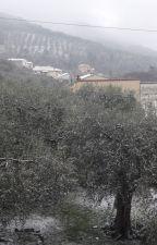 Inverno by cm_sofi