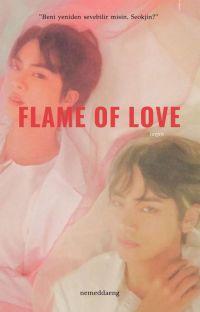Flame Of Love   Taejin  cover