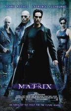 The Matrix (Neo x Female!Reader) by LayceJ25