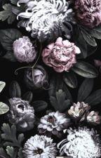EMO BAND IMAGINES || mqddieeee by mqddieeee