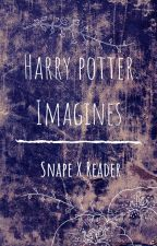 Harry Potter Imagines Snape X Reader by Thisdatea