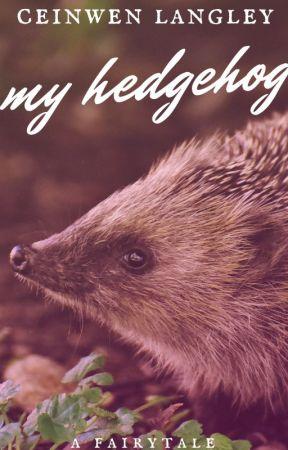 My Hedgehog by feedthewriter