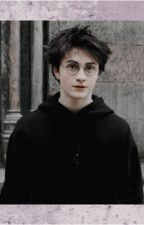 Harry Potter Oneshots & Preferences by MissHolly22