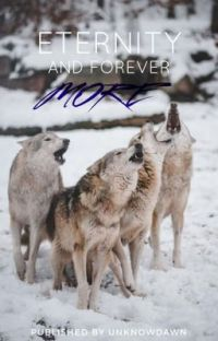 ETERNITY AND FOREVER MORE [POLYFIDELITY]  cover