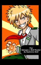 Pup    Bakugou x Wolf Reader by Nashmira_Wolf