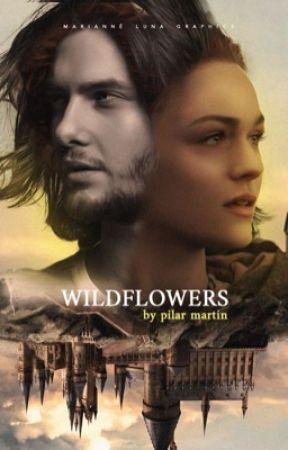 WILDFLOWERS ( Sirius Black ) by barneswald