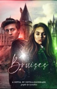Bruises ꨄ︎ James Potter cover