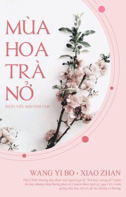 Đọc truyện [Bác Chiến] Mùa hoa trà nở