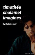t. chalamet imagines by KatetheKat8