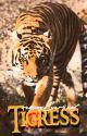 Tigress by newlarzus