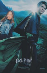 Why || Cedric Diggory  cover
