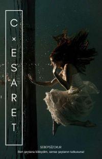 C-ESARET+18  cover