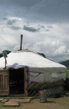 Finally, I Got The Best Yurt For My Home! Here Is all the struggle Behind it! by Elizabeth-Larrson