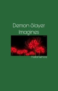 Demon Slayer Imagines  cover
