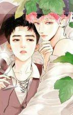 HE(chansoo)uni and Zawgi by BUMBLEBEE__612
