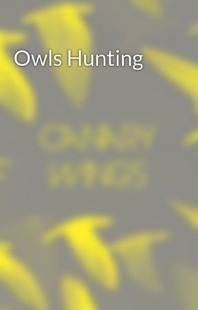 Owls Hunting by canary_wings