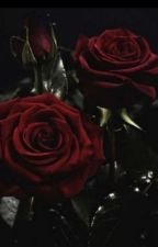Roses in the Dark (German Empire x Russian Empire fanfic) by TheRisingDarkness4