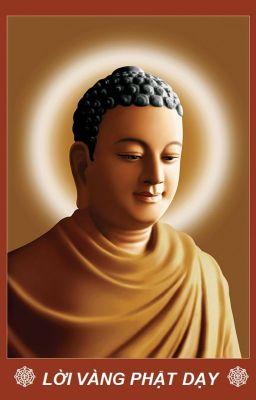 Đọc truyện Kinh Pháp Cú - 423 Lời vàng Phật dạy