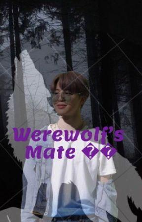 Werewolf's Mate  JiminXReader  by Bants3