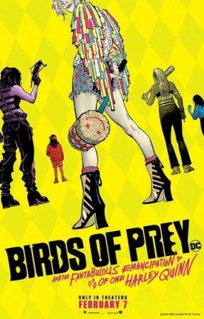 Birds Of Prey by Mini-Stark