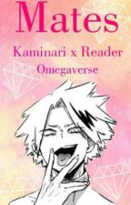 Mates: Kaminari x Reader  by officialtrash007