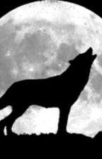 Werewolf av asma583