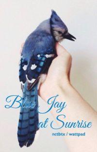Blue Jay at Sunrise [YUNGI]  cover