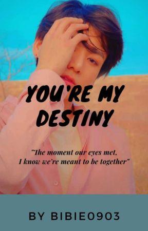 YOU'RE MY DESTINY by Bibie0903