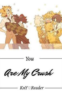 You Are My Crush ❀Kny♡Reader❀ [ Drop/ Tôi Sẽ Cố Gắng Trả Đơn Sau T^T]