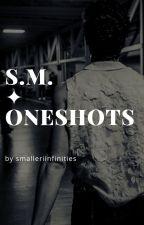 S.M. ✦ Oneshots (SMUT) by smalleriinfinities