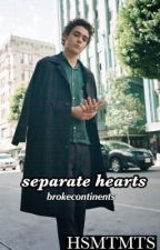 separate hearts | hsmtmts by brokecontinents