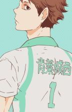 Soulmate Song (Oikawa x FEM! Reader) by Tape_Spider10