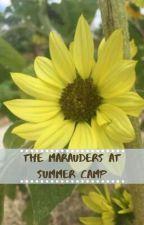 Marauders at Summercamp (au) by AnM123yt