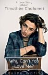 Why Can't You Love Me? || Timothée Chalamet cover