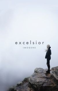 EXCELSIOR | graphic portfolio cover