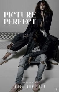 Picture Perfect {Hiatus} cover